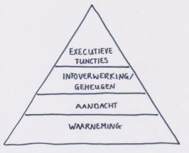 cognitieve driehoek basis